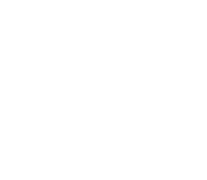 Thedayafter